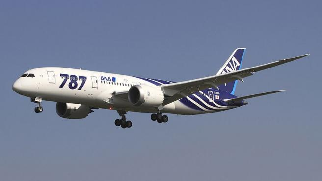 <span>Imagen del Boeing 787-8 de All Nippon Airways.</span>